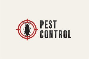 fox pest control virginia beach